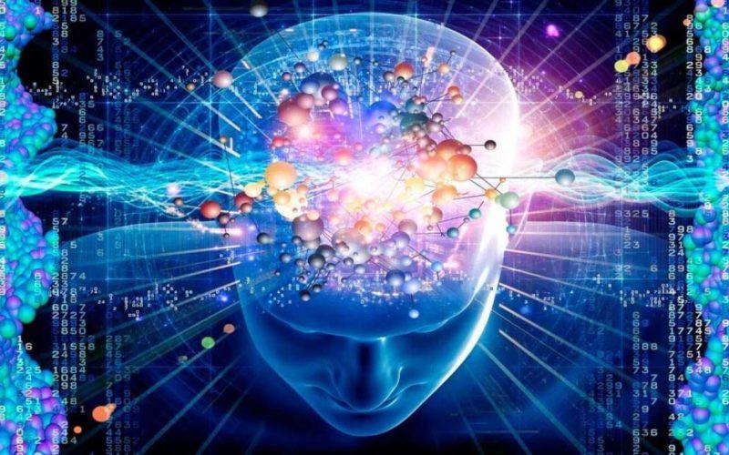brain-power-1024x621-nf5wllkp1xqaz093f6ugsnjvm1dk4tie582738jnzm